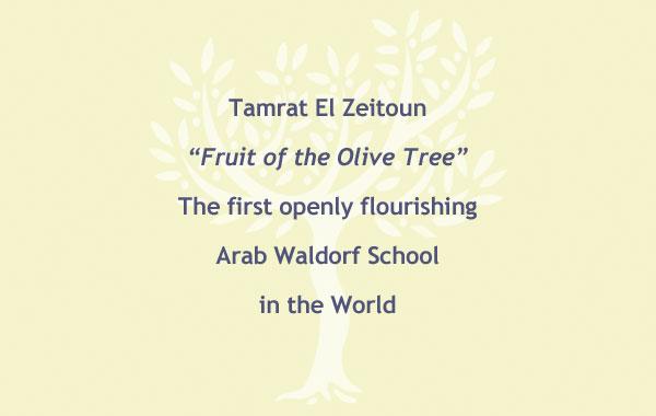 tamrat-el-zeitoun_slider1